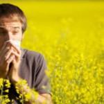 Как одолеть аллергию