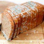 Насколько безопасно кушать хлеб с плесенью
