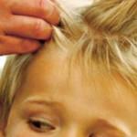 Проверка на вшивость: разоблачить и уничтожить
