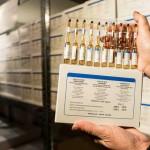 До конца недели Черновицкая область получит вакцины от туберкулеза